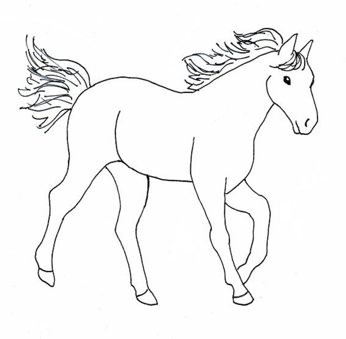 coloring book pages of horses - photo#13