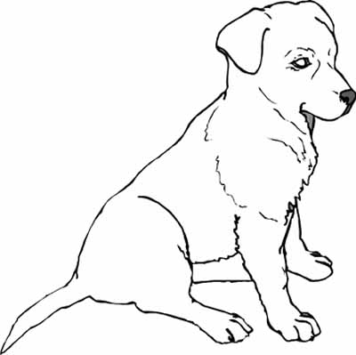 yellow lab coloring pages - photo#22